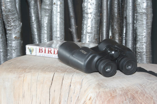 clifftop-lodge-activities-binoculars